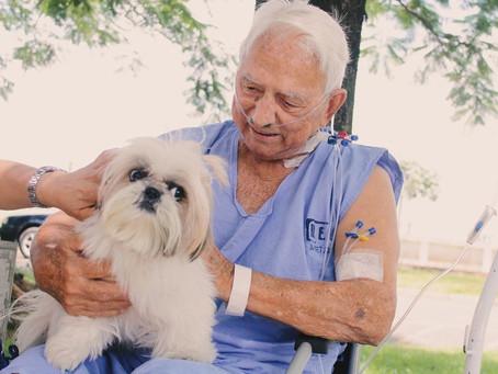Idoso internado se emociona ao receber visita de animal de estimação em hospital
