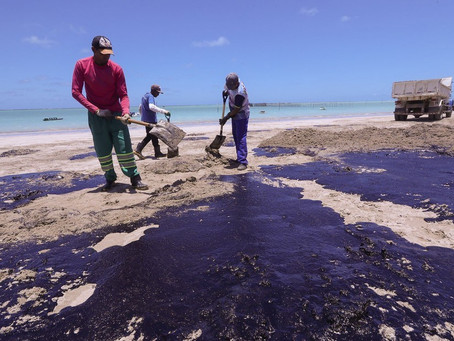 Pesquisadores querem estado de emergência de saúde pública por óleo no Nordeste