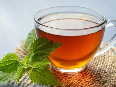 Entenda como os chás ajudam no equilíbrio corpo e mente