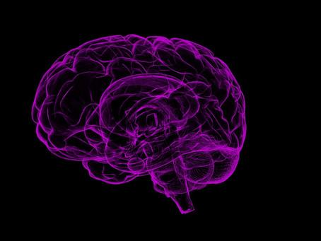 Italianos descobrem molécula que freia mal de Alzheimer