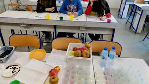 AET goût et nutrition au collège