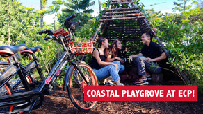 New Family Friendly Destination at Former Big Splash Site! (Coastal PlayGrove)