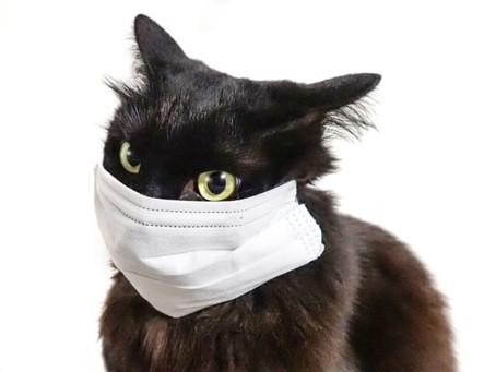マスクによる自律神経の乱れと予防法