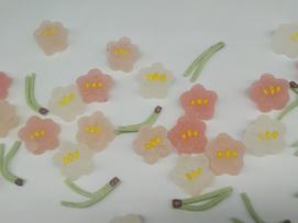 初春の華やぎ