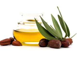 Ingredient Spotlight; Jojoba Oil