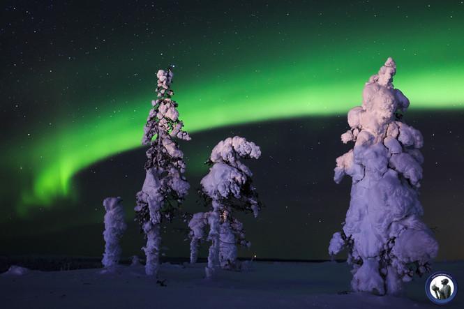 Polarlichter am Kaunispää