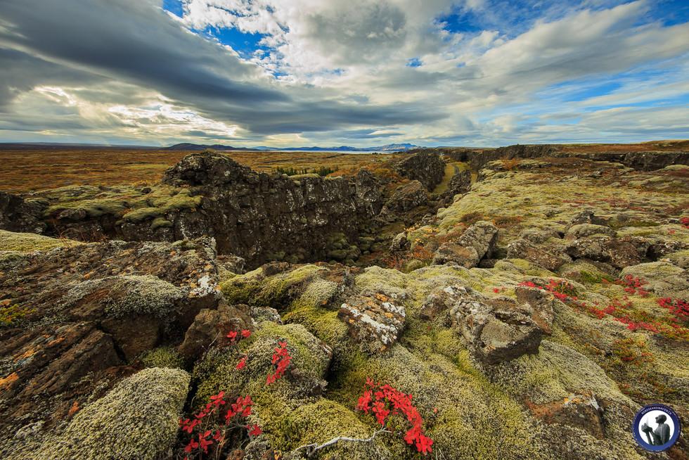 Nordskandinavien-Island-116.jpg
