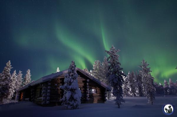 Feine Polarlichter über Blockhütte in Saariselkä