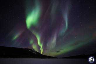 Aurora in Äkäslompolo