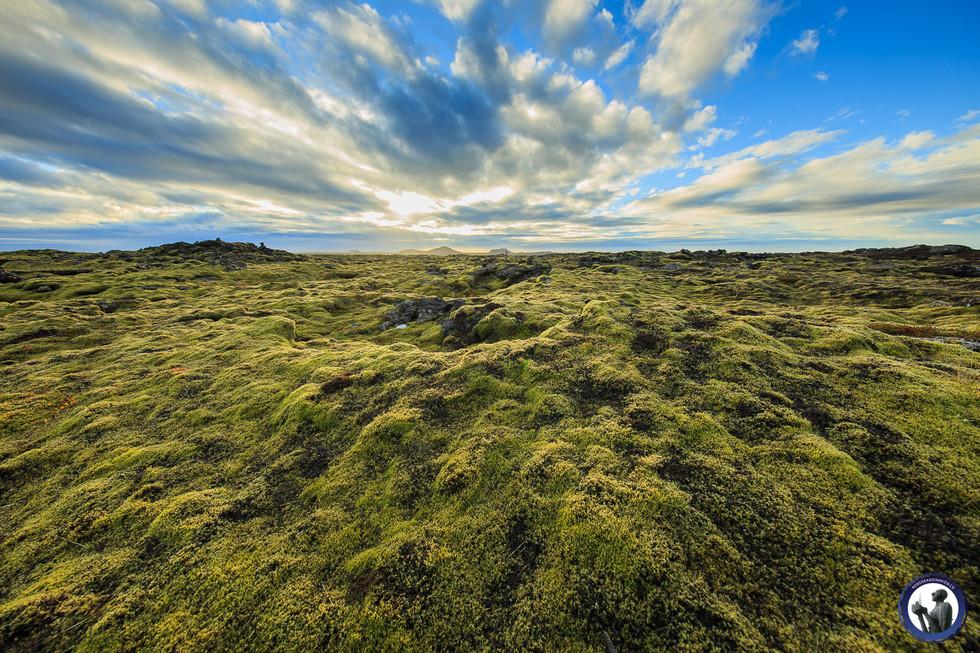 Nordskandinavien-Island-6.jpg