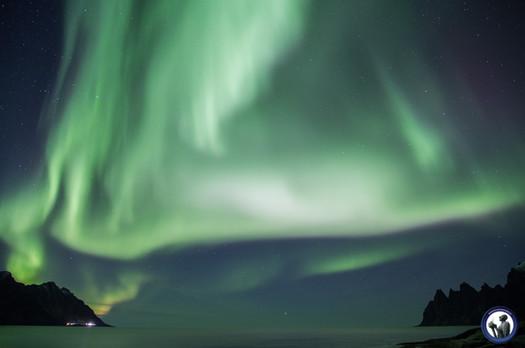 Polarlicht Triumphbogen auf Senja