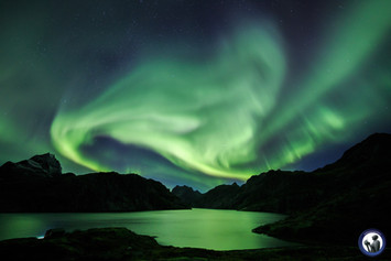 Polarlicht über dem Solbjørnvatnet auf den Lofoten
