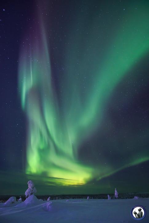 Aurora borealis in Saariselkä