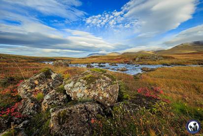 Nordskandinavien-Island-77.jpg