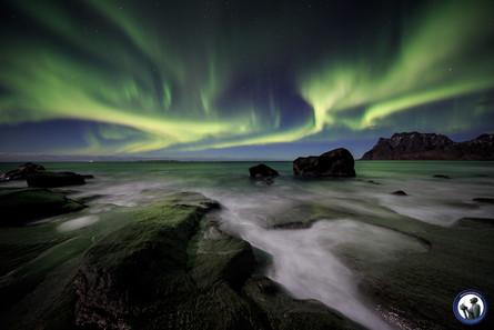 Nordlicht am Uttakleiv Beach auf den Lofoten