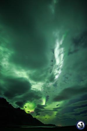 Polarlicht hinter Wolken in Island