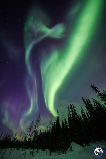 Polarlicht über Äkäslompolo