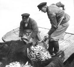 Algot (Åkes farfar) och sonen Edvin