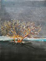 Det vindpinade trädet