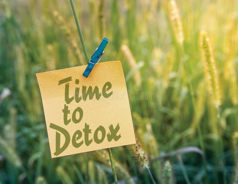 1 1/2 Hour Detox Lymphatic Massage