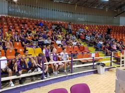 קהל במשחק