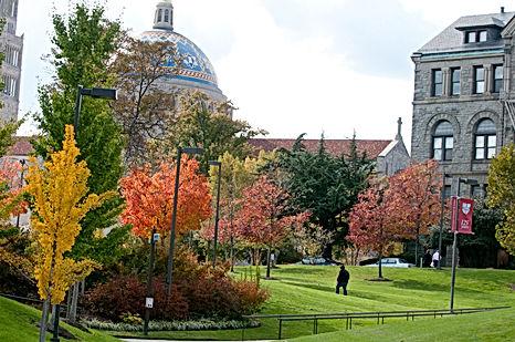 Autumn beauty shot of campu