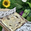 Thumbnail: Letterbox Brownie