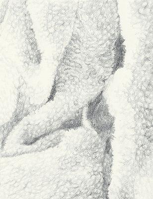 Peau, Livre d'artiste