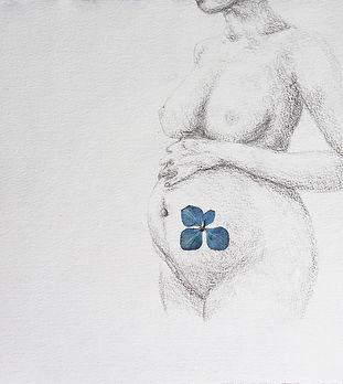 Dessin enceinte
