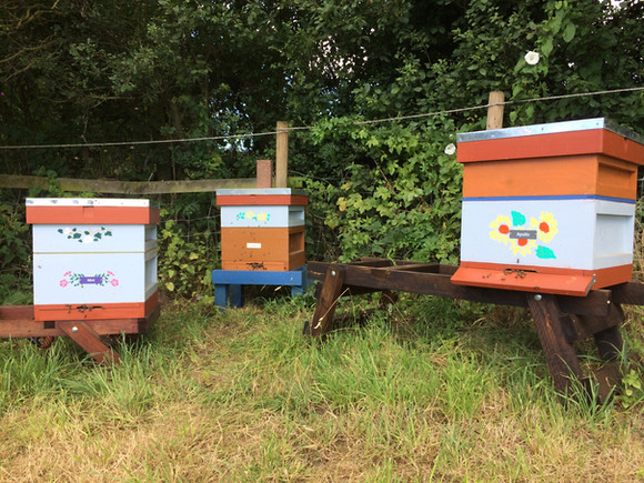 Hives at The Granary