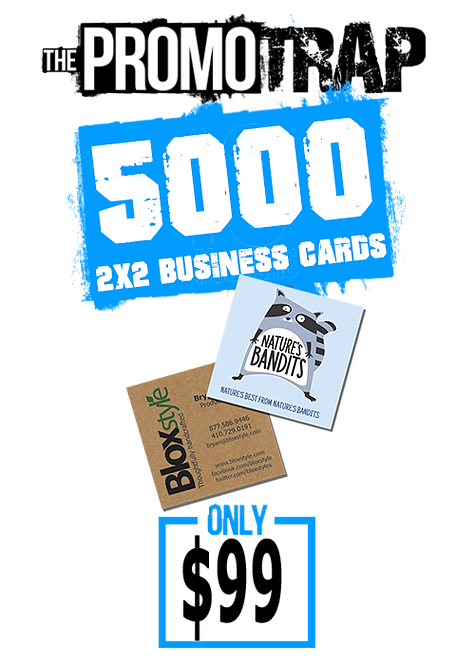 5000 2x2 Business Cards