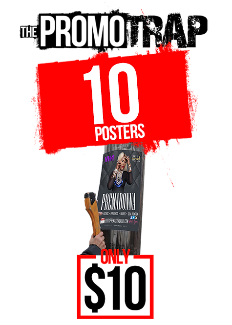 10 13x19 POSTERS