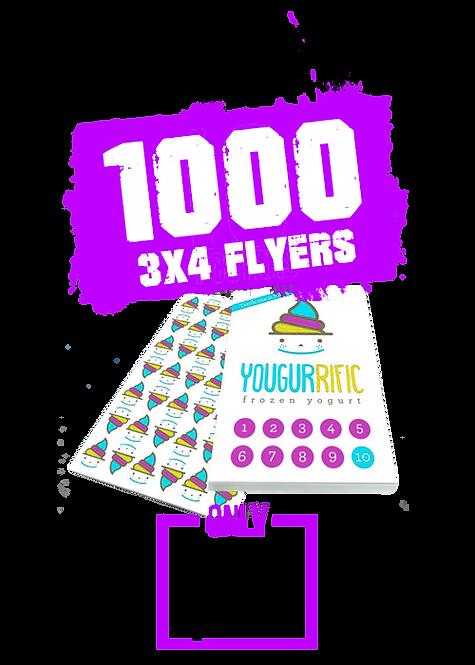 1000 3x4 Flyer