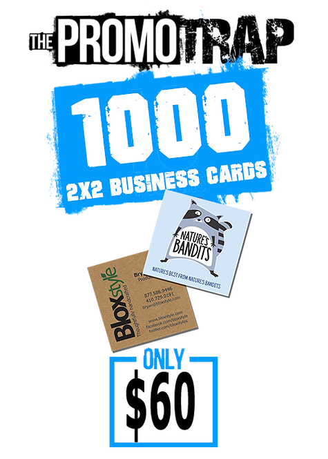 1000 2x2 Business Cards