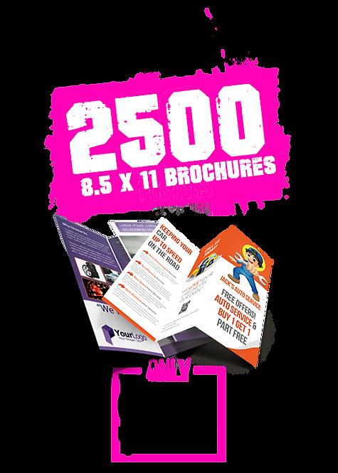 2500 8.5x11 Brochures