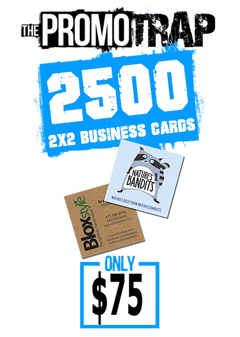 2500 2x2 Business Cards