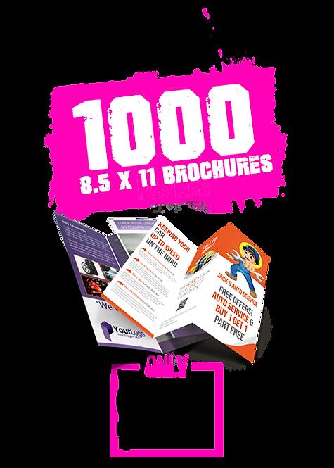 1000 8.5x11 Brochures