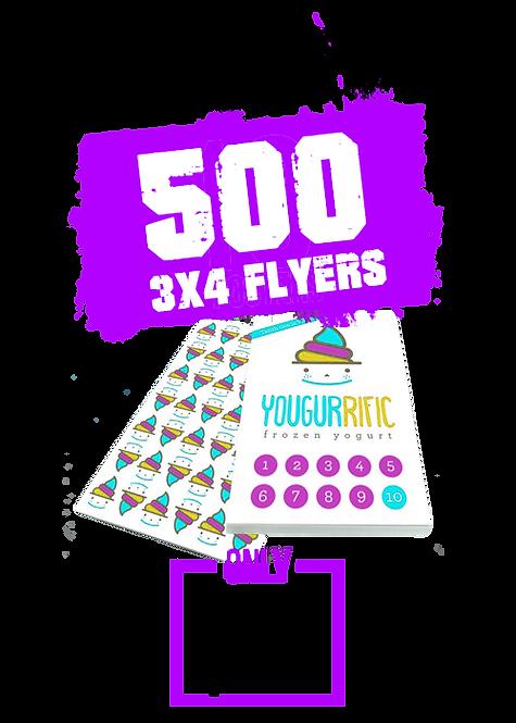 500 3x4 Flyer