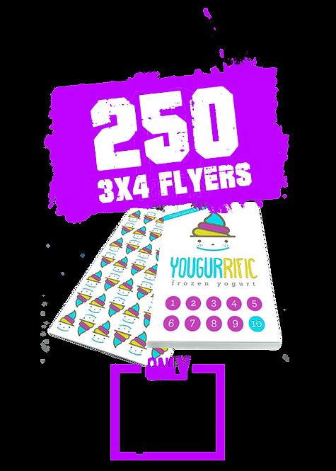 250 3x4 Flyer