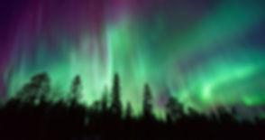 Northern Lights_newsletter.jpg