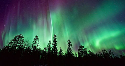 Northern Lights_newsletter.jpg