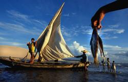 PaulLima.us / Endangered Coast