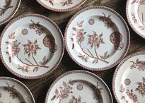 Antique plate Marguerite  フランス菊 プレート