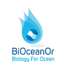bioceanor.png