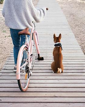 Faire une promenade