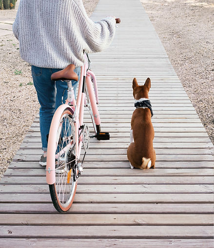 Dog and Woman Going for a Bike Ride