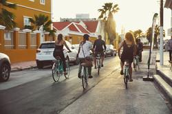 Take a bike on the wild side