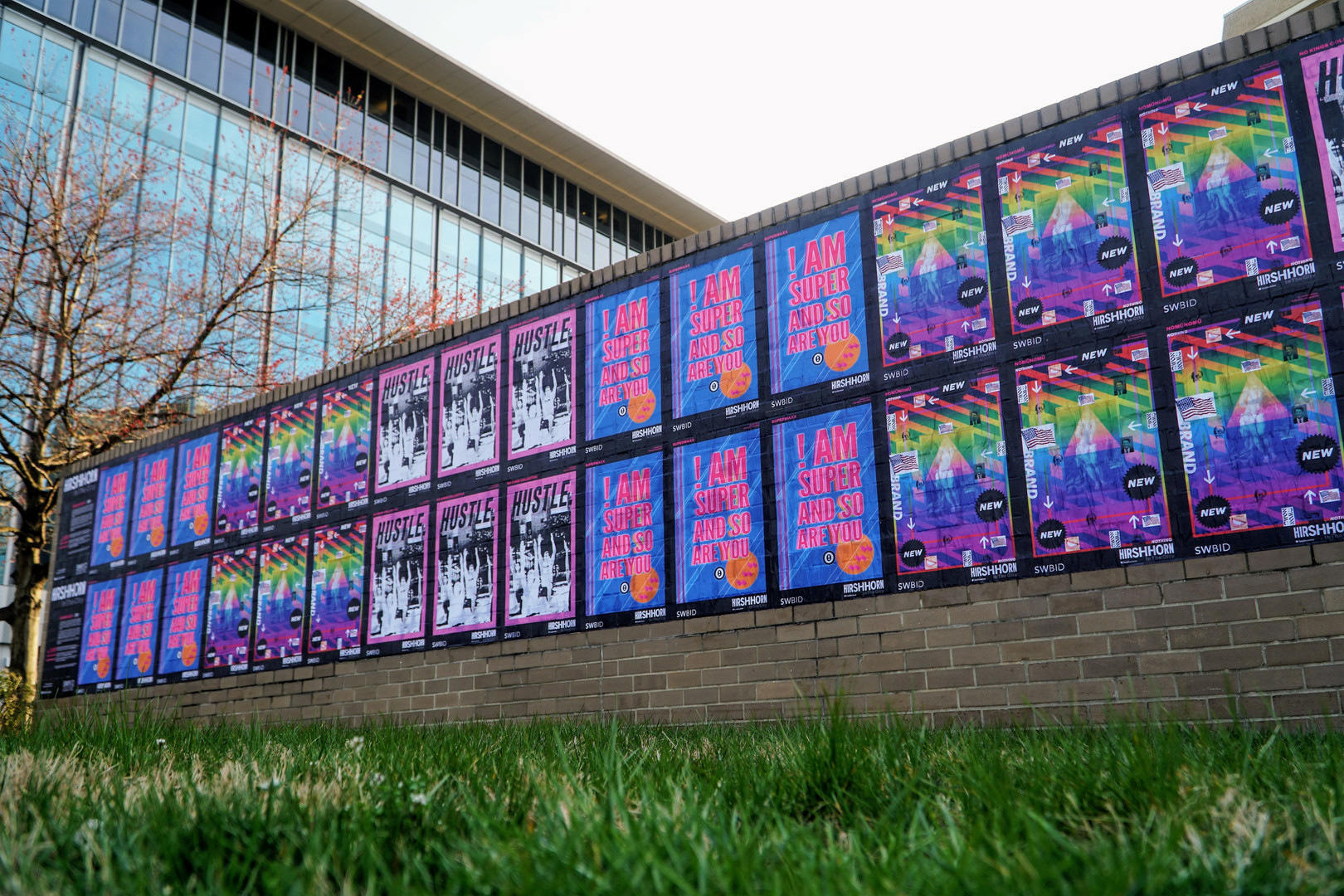 Manager of Community Events and Special Projects   installed three artists' posters around SWDC  SWBID and Hirshhorn Museum