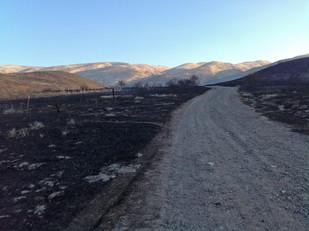 field site fire