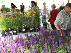Pawling Garden Club to Hold Spring Market